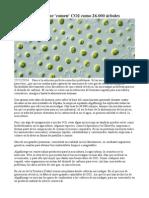 Algas Andaluzas Que 'Comen' CO2 Como 26.000 Árboles