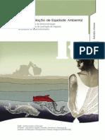 ETTERN-IPPURUFRJ-and-FASE-Relatório-Síntese.pdf
