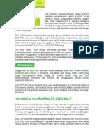 ZAP - info.doc