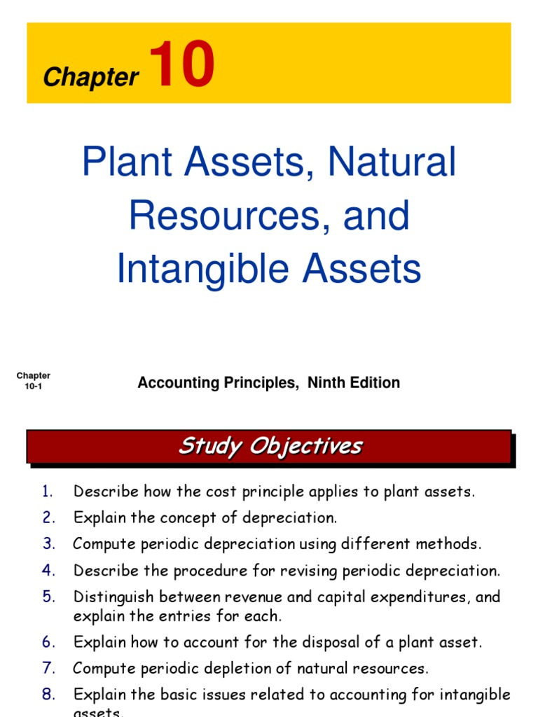 Ch10 Plant Assets Natural Resources And Intangible Assets
