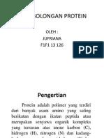 Jufriana Penggolongan Protein