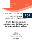 Investigación-delitos contra  la seguridad del tráfico.pdf