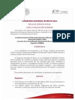 SERVICIO SOCIAL_1.pdf