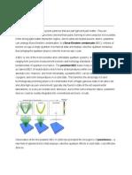 Polaritonics or Polaritronics