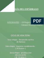 ESPEGGARO[1]