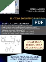 Ciclo Evolutivo de La Familia.