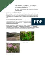 Actividad Complementaria Parque Natural de Cabañeros
