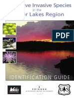 Superior NF/Friends BWCAW Invasive Species Brochure