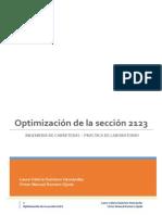 Optimización Sección