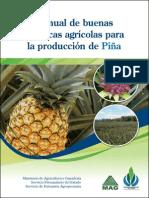 Manual de Buenas Practicas para la produccion  de Piña
