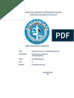 INSTITUTO SUPERIOR TECNOLOGICO PUBLICO.docx