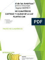 Frutos no climatericos