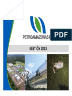 Informe-de-Gestion-2013-