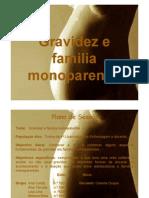 Gravidez Familia Monoparental