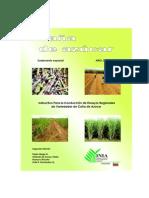 Instructivo Para la Conducción de Ensayos Regionales de Variedades de Caña de Azúcar