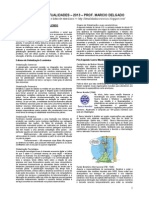 apostilaatualidades2013-131007111158-phpapp01.pdf