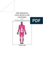 Hbs Skeleta and Muscular Systems Tg