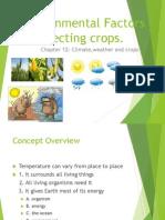 Factorii Ce Influenteaza cresterea plantelor