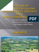 Derivacion de Indicadores de Calidad de Suelos en El Contextos de La Agricultura Sustentable