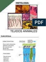 biologiahistologiaanimal