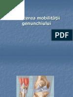 mobilizare genunchi