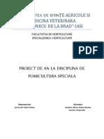 proiect pomi