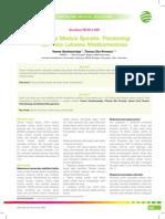 05_219CME_Trauma Medula Spinalis-Patobiologi Dan Tatalaksana Medikamentosa