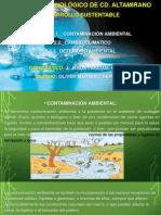 contminacion ambiental