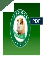 Municipalidad Jauja- Mejoramiento de Cuyes