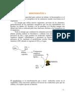 Bioenergetica 2014 Word