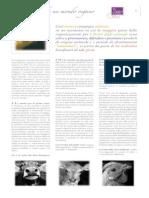 letter-it.pdf