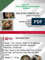 2.Malayan Pangolin