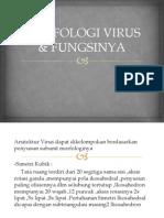 Morfologi Virus & Fungsinya