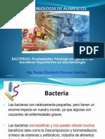Bacterias Calsificacion y Caracteristicas 19-4-13