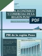 Perfil Economico Region Puno