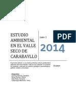 GEOLOGIA AMBIENTAL-ESTUDIO AMBIENTAL DEL A.A.H.H. VALLE SECO DE CARABAYLLO.pdf