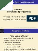 Chap01 Determinants of Culture