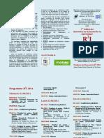 Depliant Programme R2I 2011