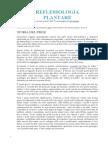 reflessologia_plantare