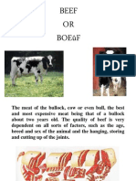 Beef Cuts and Usage