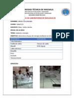 Practica de Biologia 3y4 2014