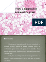 Estructura y composición química de la grasa
