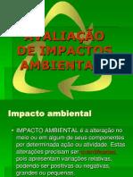 Apresentacao Impactos VIII (AIA-EIA-RIMA) 37394