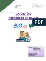 Informe GES