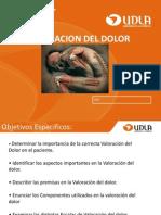 Valoracion Del Dolor Pae 301 (1)