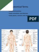 1 Anatomical Terms