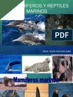 Clase Mamiferos, Reptiles y Aves