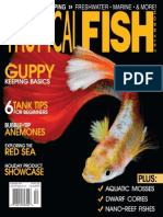 Tropical Fish Hobbyist December 2014