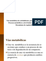 1 Vias Metabolicas