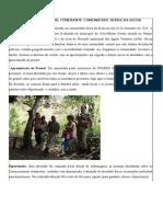 relatorio festival serra da bicha